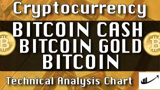 Jan-16 BITCOIN CASH (BCH)  : BITCOIN GOLD (BTG)  : BITCOIN (BTC) CryptoCurrency Technical Analysis