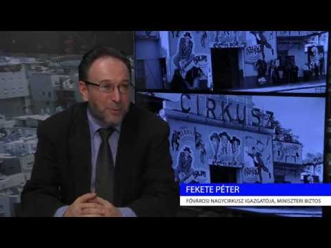 Fekete Péter interjú