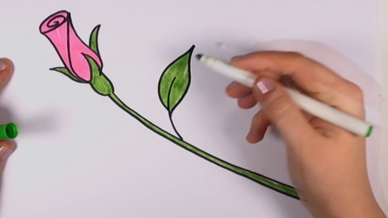 How To Draw A Rose For Beginners Pink Rose Bud Art Tutorial Cc