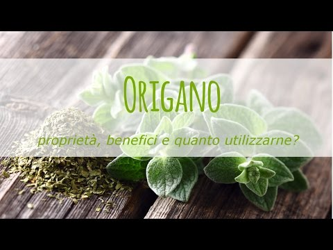 origano: proprietà e benefici!