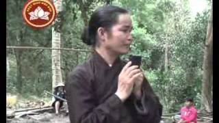 PGHH: Kịp Kỳ Long Hội (NamMoADiDaPhat.org)
