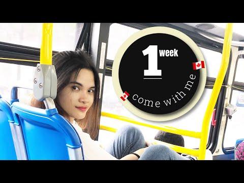VLOG#3: Exploring London, Ontario CA (International Student in Canada) | Merry Christle