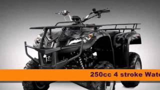 10. 250cc 4 Wheeler For Sale