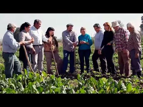 Ver el video Pro Huerta - Soberanía alimentaria en Tucumán
