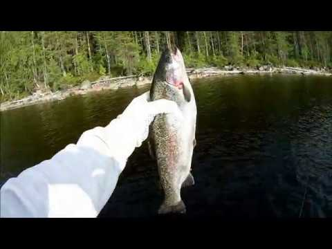карелия кумское водохранилище рыбалка видео