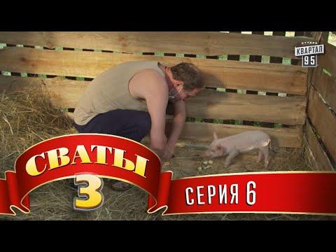 Сваты 3 (3-й сезон, 6-я серия) (видео)