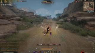 Ниндзя против лучницы / Ninja VS Ranger / Black Desert