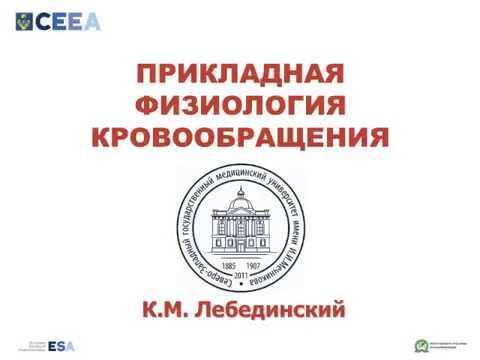 Физиология кровообращения     Лебединский К.М.(2часа)