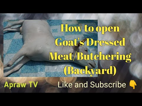 How to open Goat's Dressed Meat/Butchering (Backyard)