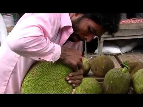 Video Bangladesh Fresh Veg & Fruits download in MP3, 3GP, MP4, WEBM, AVI, FLV January 2017