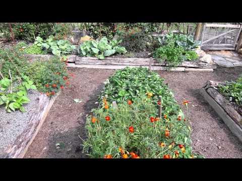 Peggy's Hearth and Garden