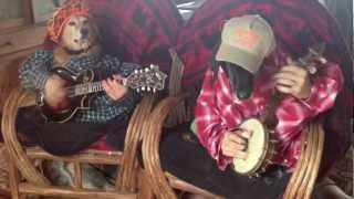 You Must See These Two Dogs Play Bluegrass - Lmao!