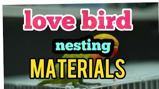 Love bird nesting martials