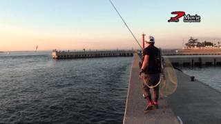 2013年 秋の日間賀島釣行 ZBL MINNOW で攻略