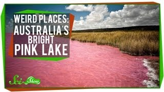 Bright Australia  city images : Weird Places: Australia's Bright Pink Lake