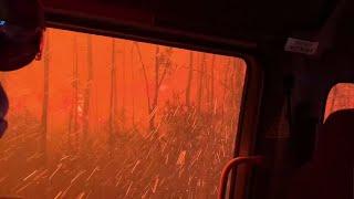 Dramatyczna walka strażaków o wyjazd ze środka palącego się lasu