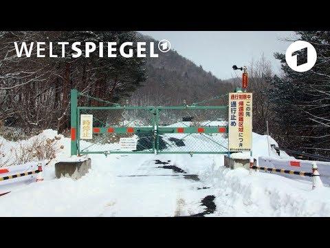 Japan: Fukushima – Die Rückkehrer | Weltspiegel