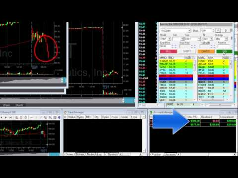 A Day Trading salary – $1,000 in an hour – Meir Barak