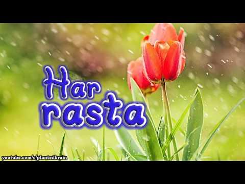 Romantic quotes - Rasta  Romantic  Sad  Love  Emotional  Cute  Hindi Status  Best WhatsApp Status