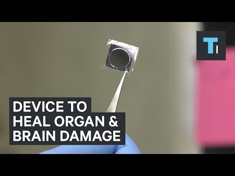 Revolutionary Device Can Heal the Brain and Organs in Seconds