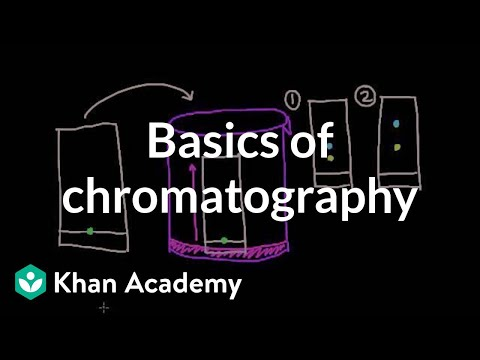 paper chromatography introduction