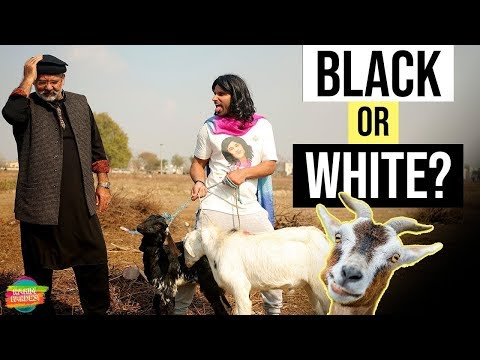 Black or White | Nasreen | Rahim Pardesi | Talk Shows Central