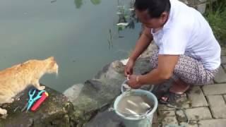 Where Dirty Water Brings Shame