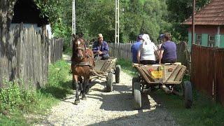 Video Romania, Village Life in Transylvania MP3, 3GP, MP4, WEBM, AVI, FLV Maret 2019