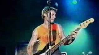 Green Day - Basket Case LIVE