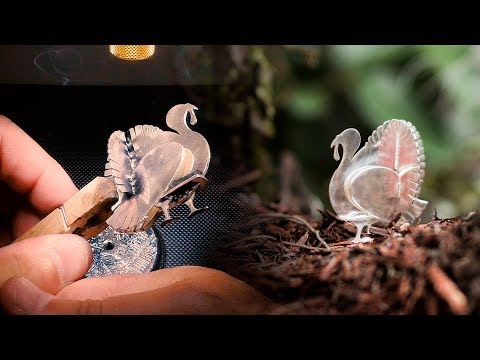 <h3>Laser Welding   Sterling Silver Turkey Sculpture</h3><p>In this laser welding video we demonstrate an intricate design project we did on our signature iWeld Jewelers Edition Laser Welding System. All of the 925 Sterling Silver pieces were cut out using our FiberCube Laser Engraving System and assembled using the iWeld. Our laser welders are versatile, easy to maintain, and incredibly powerful. </p>