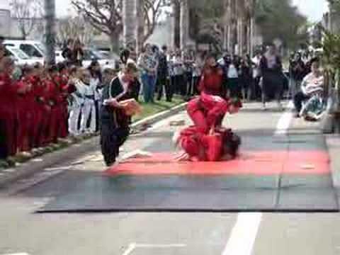 IIMA Karate Demo Team 2008