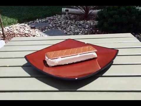 cream - Dan Collins of KIKN 100.5 in Sioux Falls heard that an Walmart Ice Cream Sandwich won't melt in the sun. So, he put it to the test. And what do you know - it won't, even after 75 minutes in...