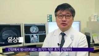 간암의 방사선치료 미리보기