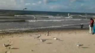Stań na brzegu morza