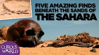 Video 5 Amazing Finds Beneath the Sands of the Sahara MP3, 3GP, MP4, WEBM, AVI, FLV Juli 2018