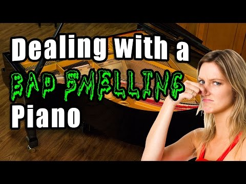 Dealing with a Bad Smelling Piano