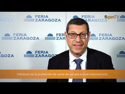 Interview with Javier Lopez from PROVACUNO in Figa