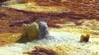 Dallol, Danakil, Afar, Ethiopia Active Salt Field