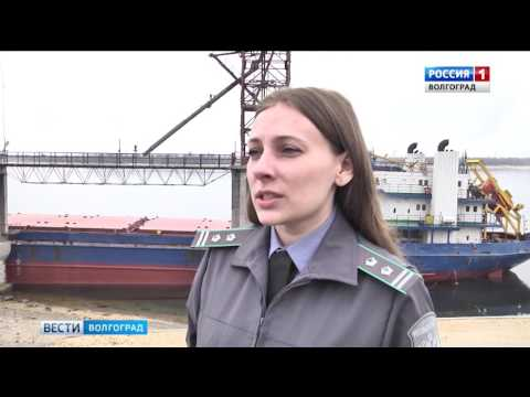 О контроле специалистами Россельхознадзора экспорта сельхозпродукции из Волгоградской области
