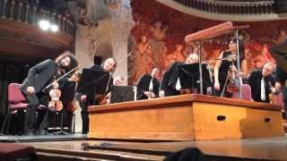 Simfònia al Palau Orquestra Simfonica del valles Ara Malikian violi i director.