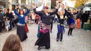 Offenburg Germany  city photo : ATS® Flash Mob World Wide 2015 Offenburg/ Germany