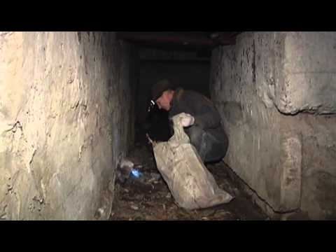 Kharkiv Bomb Shelters Cleanup: Ukrainians prepare for possible attacks by Russian-backed militants.