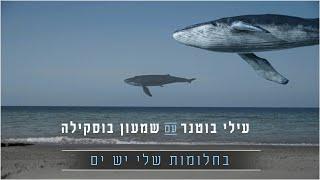 הזמרים עילי בוטנר עם שמעון בוסקילה - סינגל חדש - בחלומות שלי יש ים