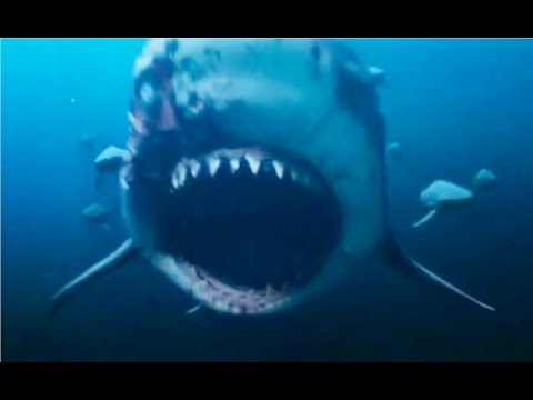 Deep Blue Sea 2: Kill Count