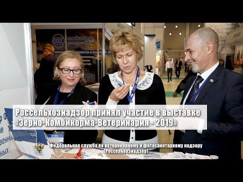 Россельхознадзор принял участие в выставке «Зерно-Комбикорма-Ветеринария - 2019»
