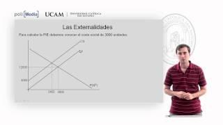Microeconomía II - Los Fallos Del Mercado (2) - Alfonso Rosa García