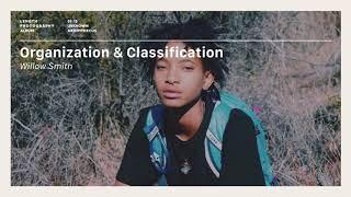 Willow - Organization & Classification