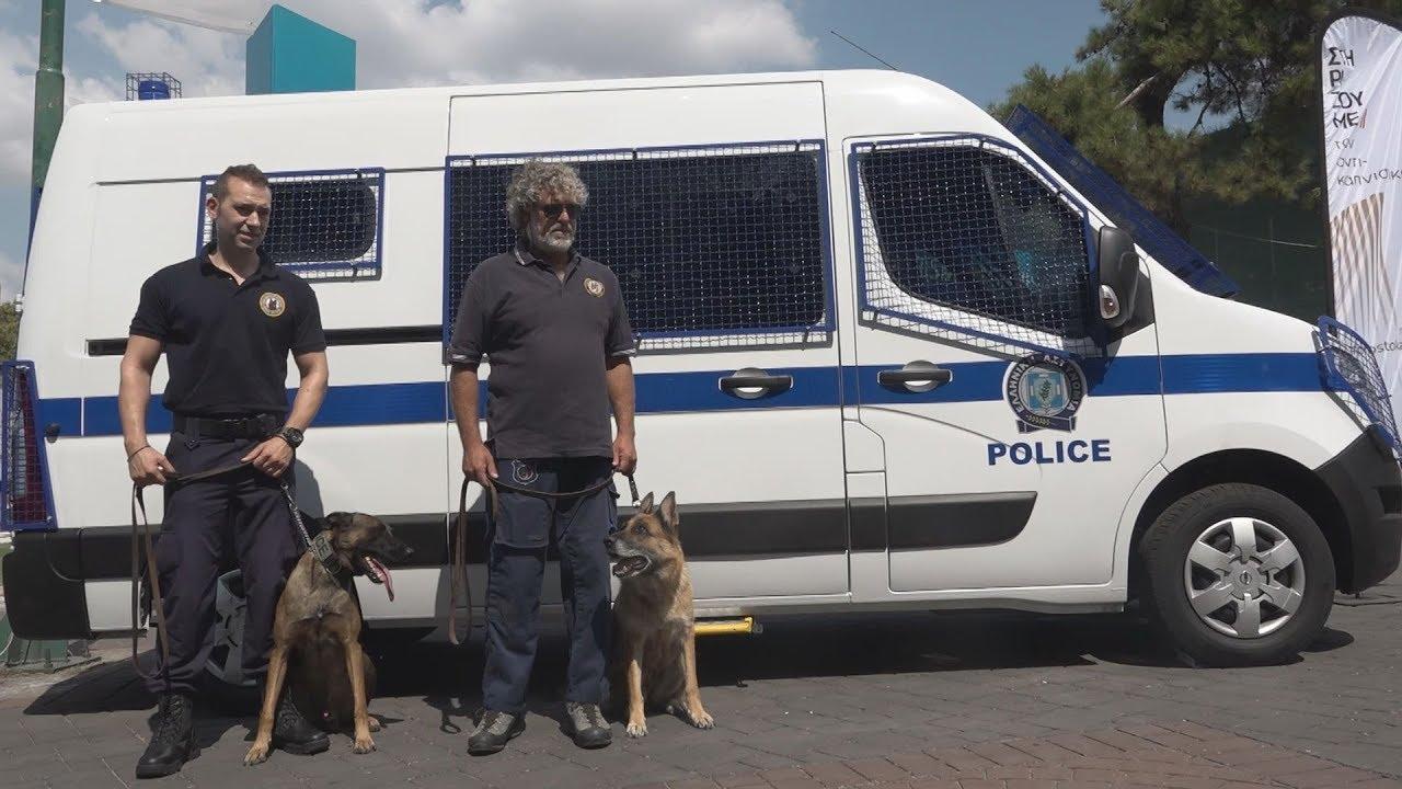 Αστυνομικοί σκύλοι σε ρόλο… ανιχνευτή