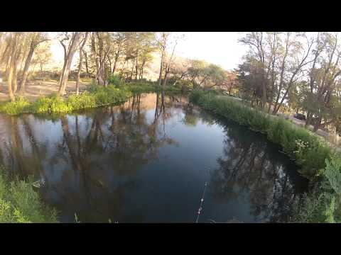 Base camp: fishing at the trout pond