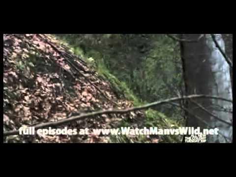 Man vs. Wild - Georgia-Eastern Europe Season 5 Episode 4 (2 of 3)